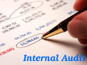 internal_audit1
